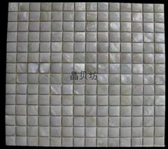 凸面正方形淡水贝马赛克