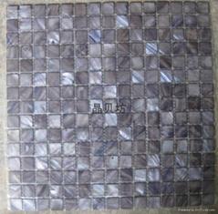 染色正方形淡水贝马赛克