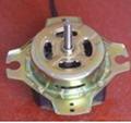 Ac wash motor