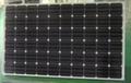 青海单晶多晶太阳能电池板 2