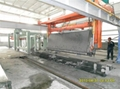 aerated block production equipment (100000 cubic)