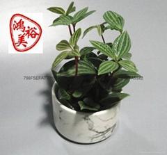 厂家直销多肉植物花盆容器家居摆饰大理石陶瓷工艺品