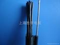 自承式钢索电缆 2