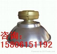 SBF6110免維護節能無極燈
