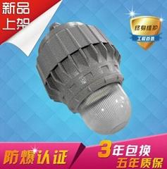 新款防爆平臺燈50W