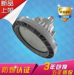 XQL8030新款LED防爆投光燈