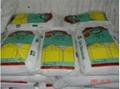 四川川鴻高品質工業級無水磷酸三