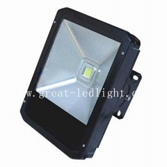 100W LED Tunnel Light GL-FL-100W1B