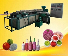 Made in China Factory Directly EPE Foam Net For Fruit and Bottle Packaging