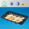 Eco-friendly Plastic Frozen Food Trays