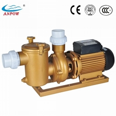 High Flow Rate Bronze Electirc Water Pumps