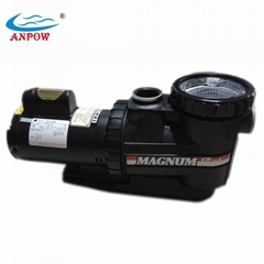 Swimming Pool Filter Water Pump