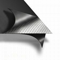 NGP-SG103 SS316 Tanged Reinforced Graphite Sheet