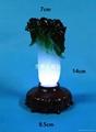 led night light jade cabbage 2