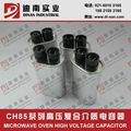 Industrial microwave oven capacitor 3