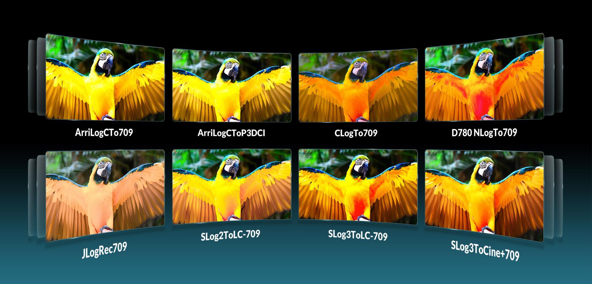 LILLIPUT 23.8inch UHD 12G-SDI,HDMI 2.0 broadcast  production studio monitor 12