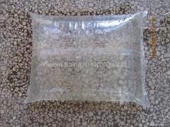 袋装水生产线
