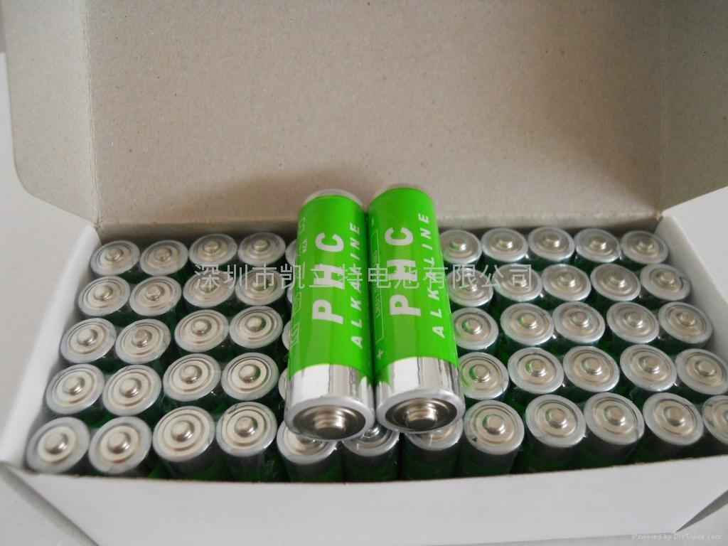 碱性电池 2