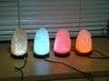 Natural USB Led Salt lamps home decor