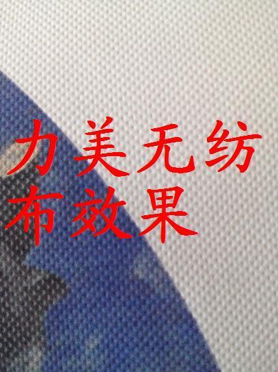 珍珠畫布  打印無紡布 4