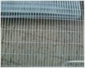 Ga  anized welded wire mesh