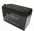 6GFM-100铅酸蓄电池 2