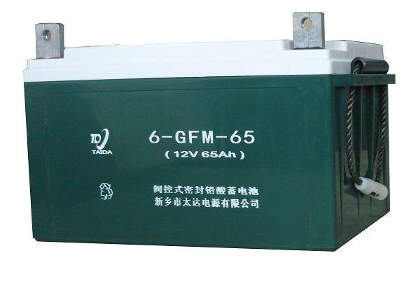 6GFM-65铅酸蓄电池 1