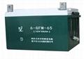 6GFM-65鉛酸蓄電池