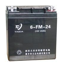 6FM-24铅酸蓄电池 1