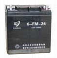 6FM-24铅酸蓄电池
