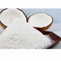 Vietnam High-Quality Desiccated Coconut - High Fat 200gr