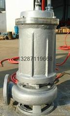 全鑄造不鏽鋼污水泵