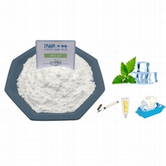 Food Grade cooling agent ws23 additive