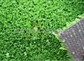 篮球场专用人造草