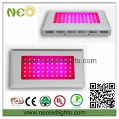 55*3W RED and blue led grow light