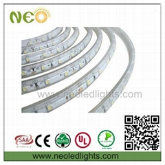12V/24V/220V 5050 led led strip light