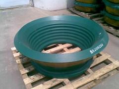 bowl liner, upper concave, lower concave
