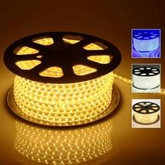 AC 220V LED Strip lights 100m
