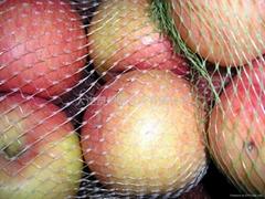 Plastic packaging net production line