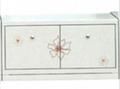 Decolor steel cabinet