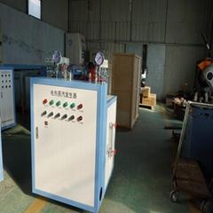 中型電蒸汽鍋爐