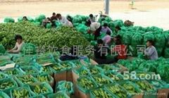 黄江蔬菜配送