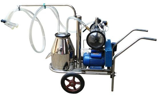 Cow milking machine price in bangalore dating 4