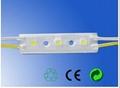 5050 LED 模组照亮广告