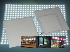 真正高光效LED模組