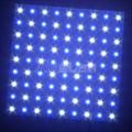 定制双色Led灯板 30x30