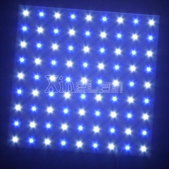 Customized smd 5050 30x30 cm bi-color led panel light white and blue