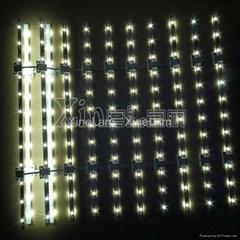 经济型LED 软卷帘 背光广告灯箱(双面灯可选)