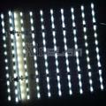 经济型LED 软卷帘 背光广告灯箱(双面灯可选) 2