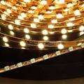 NO Waterproof LED flex light rope 5